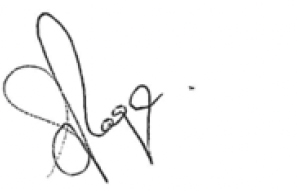 Picture of signature steve Page A message from our group CEO.